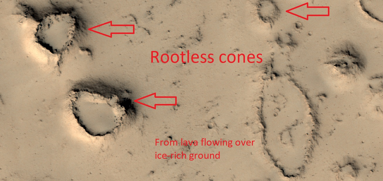 Rootless cones